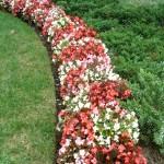flower-rotation-maintenance-150x150